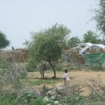 <!--:en-->Return from Sudan<!--:-->